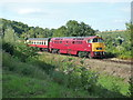 SO7482 : BR No. D1015 'Western Champion' at Highley by Fabian Musto