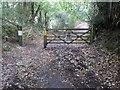 TQ6731 : Bewl Water Nature Reserve by Marathon