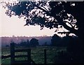 TL9920 : View from Cherry Tree Lane by Mr James D