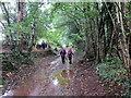 SO4903 : Dilyn trac gwlyb / Following a wet track by Alan Richards
