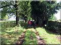 SO5003 : Llwybr ger Woodside / Path near Woodside by Alan Richards