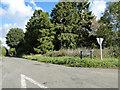 TG1930 : Southern end of Eagle Lane NR11 by Adrian S Pye