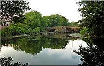 SK5907 : River Soar near Belgrave in Leicester by Roger  Kidd