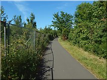 NS3977 : Cycle path at Dalquhurn by Lairich Rig