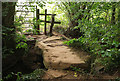 ST5862 : Footbridge on Two Rivers Way : Week 38