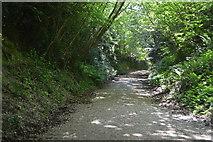 TQ6242 : Rowley Hill by N Chadwick