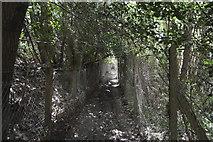 TQ6242 : Footpath, Gimble Grove by N Chadwick