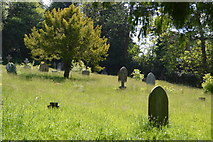 TQ6241 : Old cemetery by N Chadwick