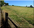 SX9983 : Field track on the East Devon Way, Lympstone by Jaggery