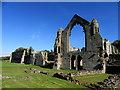 SJ5415 : Haughmond Abbey : Week 40