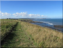 TA0983 : Cleveland Way at Gristhorpe Cliffs by T  Eyre