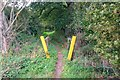 SU7939 : Gate over Stream, Sleaford, Hampshire - 200918 by John P Reeves