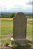 N9159 : United Irishmen's Monument by N Chadwick