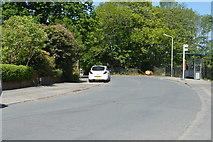 TQ6040 : Greggs Wood Rd by N Chadwick