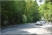 TQ6040 : A264, Pembury Rd by N Chadwick