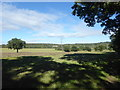 TQ1994 : The Green Belt north of Edgware by Marathon