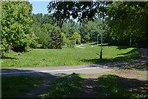TQ5941 : Oak Road Doorstep Green by N Chadwick