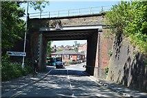 TQ5941 : Railway Bridge, Sandhurst Rd by N Chadwick