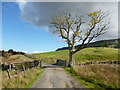 NS6491 : Gate across the road near Keir Knowe by Alan O'Dowd