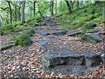 SK2579 : Stepped path in Padley Gorge by Graham Hogg
