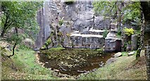 SK2479 : Pool and rock face in Bolehill Quarry by Graham Hogg