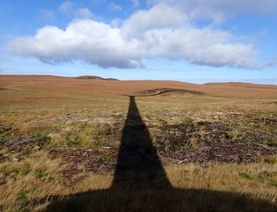 NC7957 : Edge of Strathy North Forest in Shadow of Wind Turbine by Chris and Meg Mellish