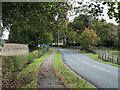 NZ3131 : Road entering Mainsforth by Trevor Littlewood