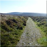 SX6781 : Into the valley [1] by Michael Dibb