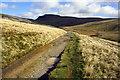 SD7273 : Fell Lane track heading towards Ingleborough by Roger Templeman
