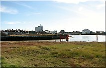TG5107 : The confluence of the Rivers Yare and Bure by Evelyn Simak