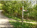 SE9232 : Yorkshire Wolds Way signpost by Graham Hogg