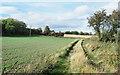 NZ2935 : Farm road with public footpath by Trevor Littlewood