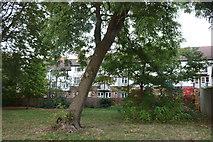 TQ1472 : Flats by Crane Park, Twickenham by David Howard