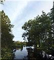 TF0016 : The Lower Lake at Holywell by Bob Harvey