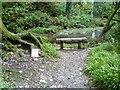 SX5084 : Lydford Gorge [49] by Michael Dibb