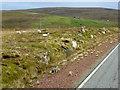 HU4791 : Roadside Sheep, A968 near Grimister by David Dixon
