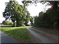 TL9225 : Chippets Lane, Aldham by Adrian Cable