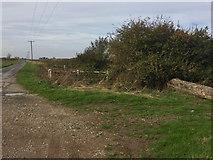 TA1343 : Whins Lane crosses a drain, near Long Riston by Paul Harrop
