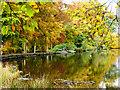 SK2679 : Autumn colour at Longshaw Lake : Week 42