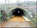 SU9263 : Windle Brook: M3 Motorway culvert by Nigel Cox