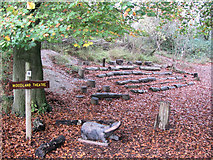 SP9314 : The Woodland Theatre at College Lake by Chris Reynolds