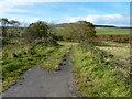 NR9423 : Road near Bogarrie Farm by James Allan