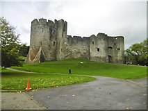 ST5394 : Chepstow Castle by Mike Faherty