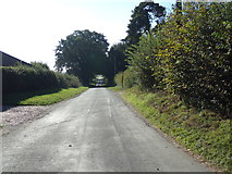 TM4098 : Church Road, Norton Subcourse by Adrian Cable