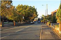 SD6900 : Manchester Road, Lark Hill by Bill Boaden