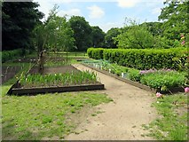 SD4615 : Kitchen garden at Rufford Old Hall by Steve Daniels