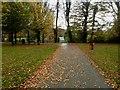 H4572 : Fallen leaves on path, McCauley Park by Kenneth  Allen