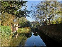TL3835 : Barkway: Wagon Wash, Church Lane by John Sutton