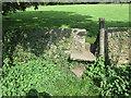 NZ0813 : Stone stile at Greta Bridge by Jonathan Thacker