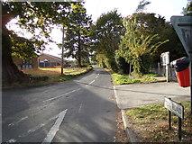 TL9125 : Tey Road, Aldham by Geographer
